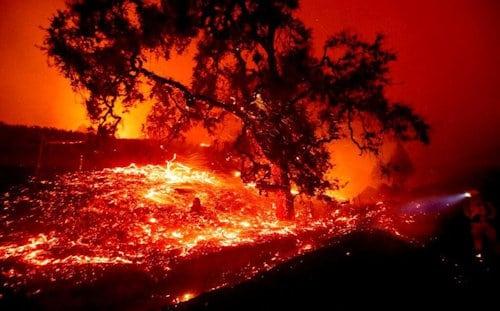 La California del fuego y el lucro